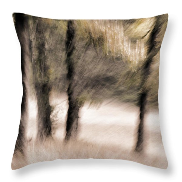 Passing By Trees Throw Pillow by Carol Leigh