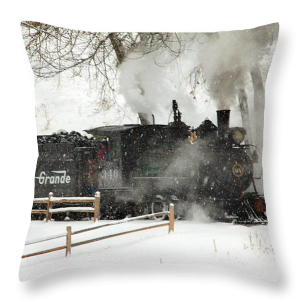 Passing The Fence Throw Pillow by Ken Smith