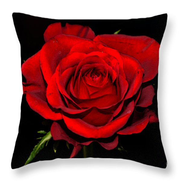Passion Throw Pillow by Pravine Chester