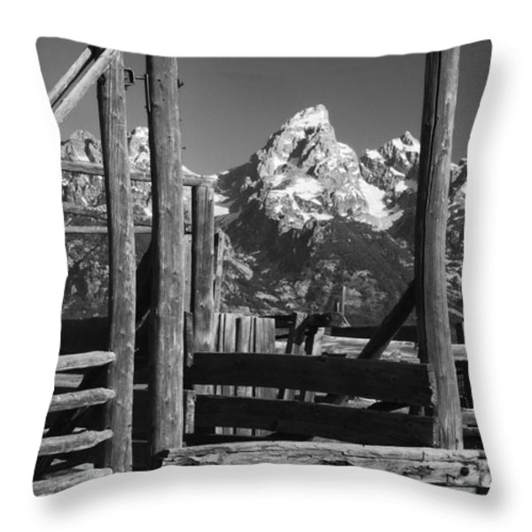 Past Its Time Throw Pillow by Sandra Bronstein