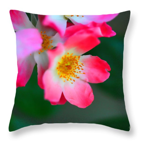 Pasture Roses  Throw Pillow by Cheryl Young