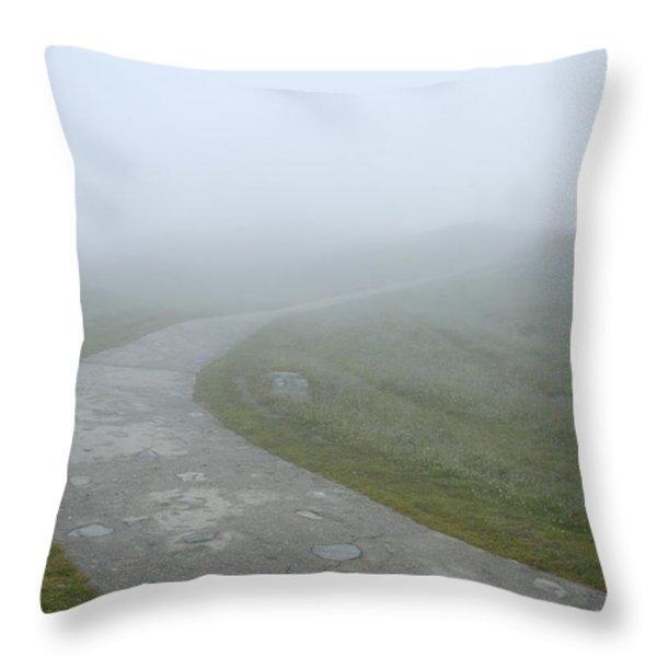 Path In The Fog Throw Pillow by Matthias Hauser