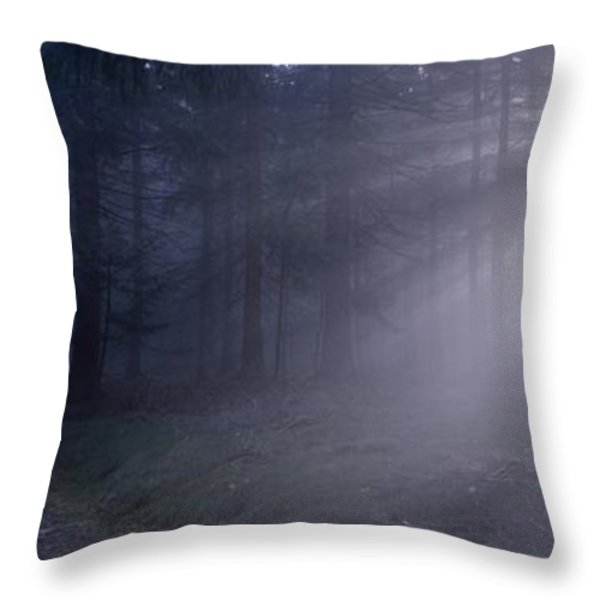 Path through a misty forest Throw Pillow by Intensivelight