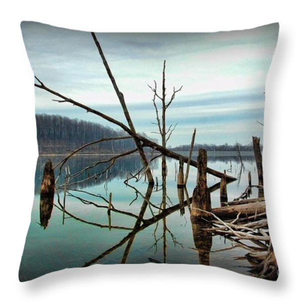Path To Enlightment Throw Pillow by Paul Ward
