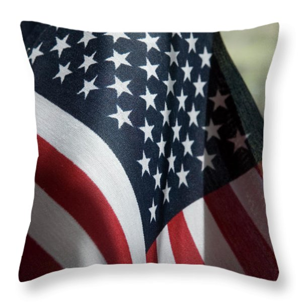 Patriotism Throw Pillow by Jerry McElroy