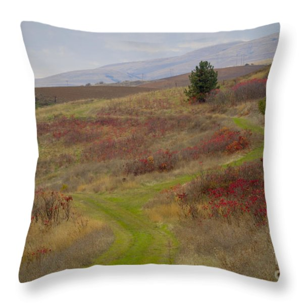 Paved in Green Throw Pillow by Idaho Scenic Images Linda Lantzy