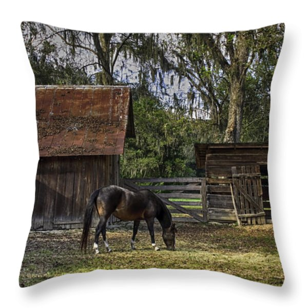 Peaceful Afternoon Throw Pillow by Lynn Palmer