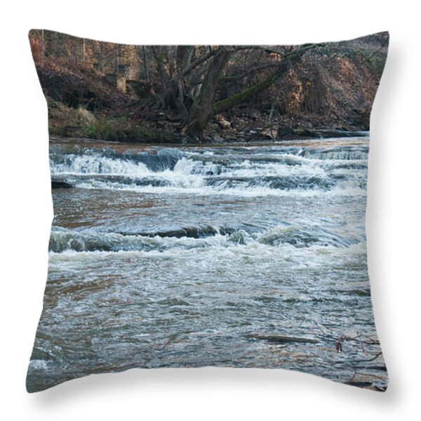 Peaceful River Throw Pillow by Michael Waters