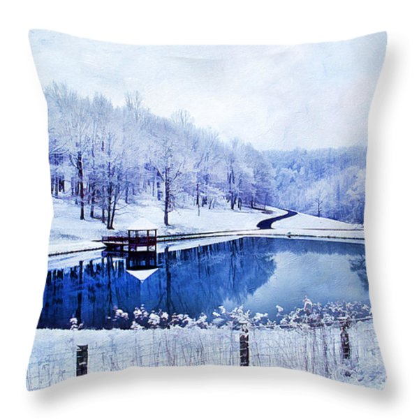 Peaceful Winters Day Throw Pillow by Darren Fisher