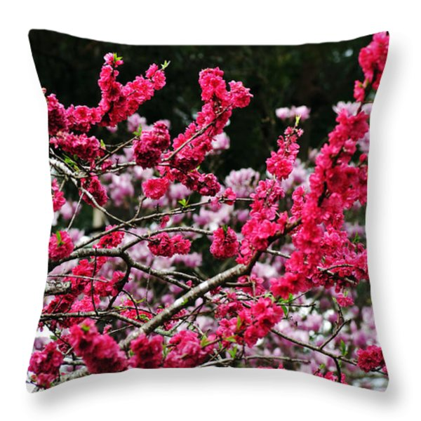 Peach Blossom Throw Pillow by Kaye Menner