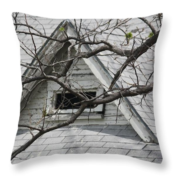 Peak Throw Pillow by Donna G Smith