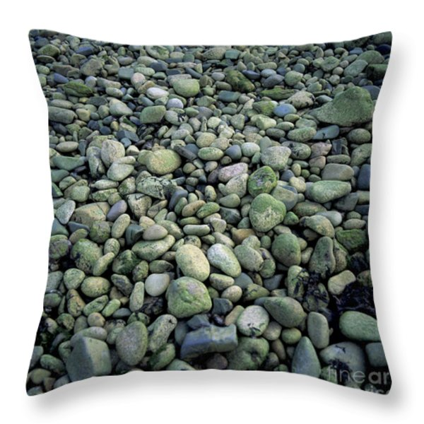 Pebbles Throw Pillow by Bernard Jaubert
