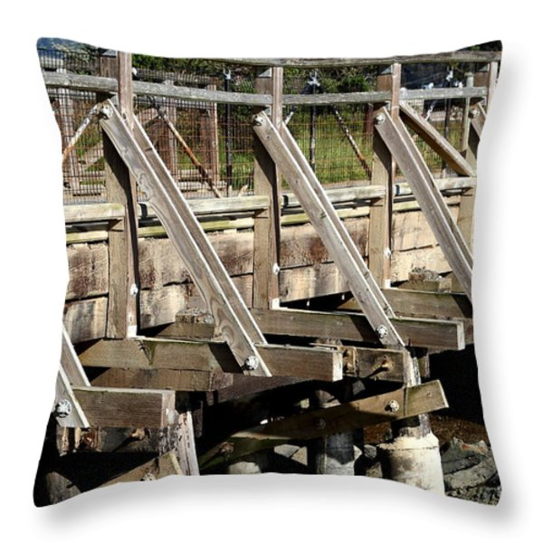 Pedestrian Bridge At Point Isabel In Richmond California . 7d15082 Throw Pillow by Wingsdomain Art and Photography
