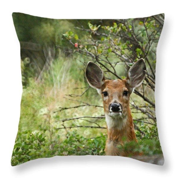 Peek A Boo Throw Pillow by Ernie Echols