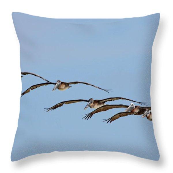 Pelican Crew In Flight Throw Pillow by Barbara Bowen