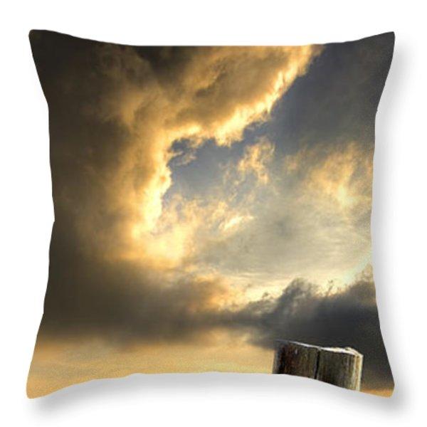 Pelican Evening Throw Pillow by Meirion Matthias