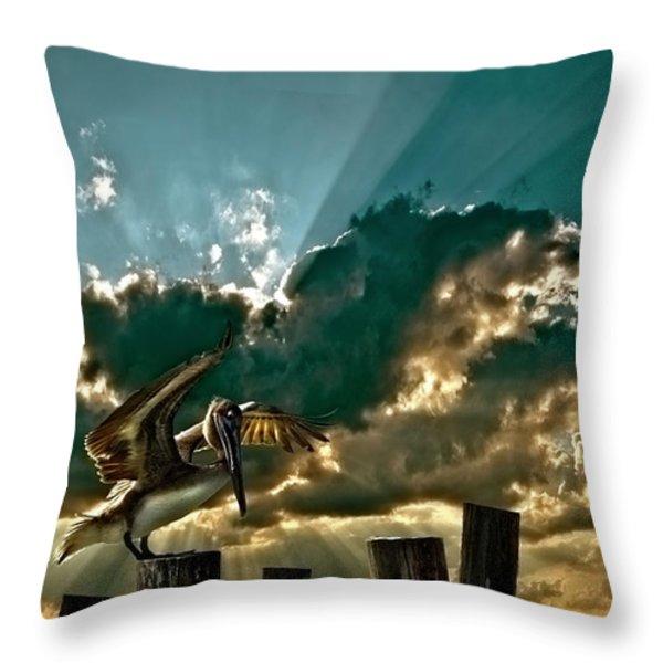 pelican sky Throw Pillow by Meirion Matthias