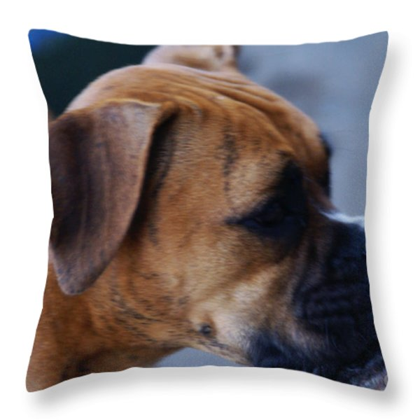 People Watching Throw Pillow by Linda Knorr Shafer