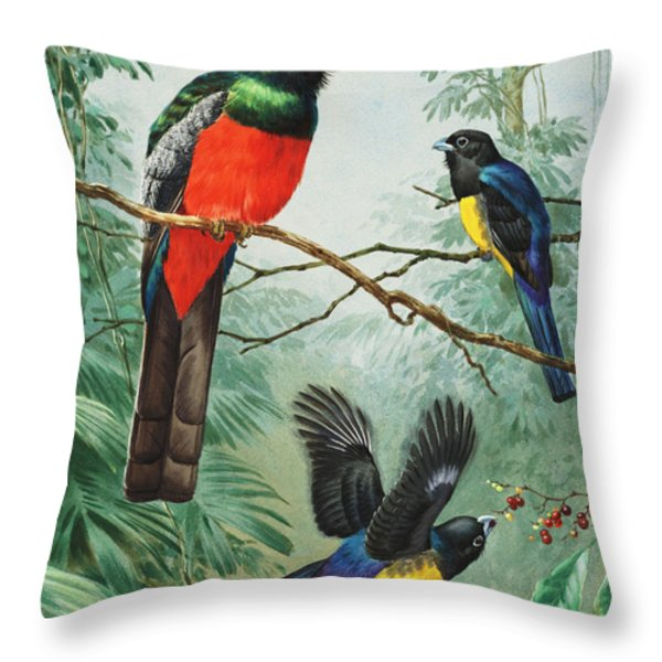 Perched And Flying Trogons Are Seen Throw Pillow by Walter A. Weber