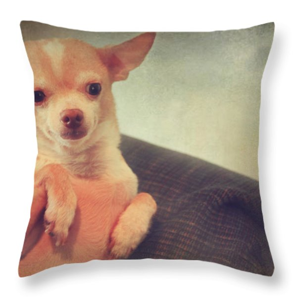 Perched Up High Throw Pillow by Laurie Search
