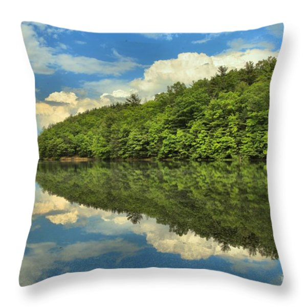 Perfect Reflections Throw Pillow by Adam Jewell
