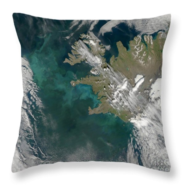 Phytoplankton Bloom In The North Throw Pillow by Stocktrek Images