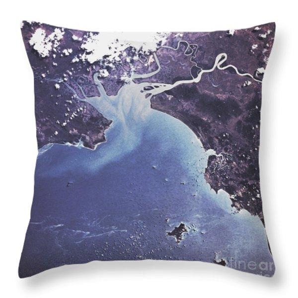 Phytoplankton Or Algal Bloom Throw Pillow by NASA