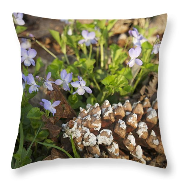Pine Cone And Spring Phlox Throw Pillow by Michael Peychich
