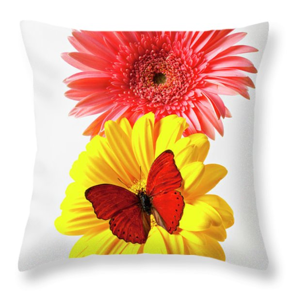 Pink And Yellow Mums Throw Pillow by Garry Gay