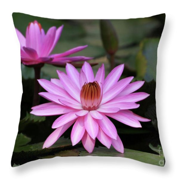 Pink Ballerinas Throw Pillow by Sabrina L Ryan