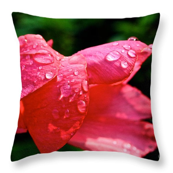 Pink Canna Lily Throw Pillow by Susan Herber