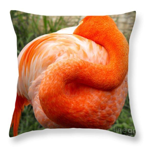 Pink Flamingo Sleep Throw Pillow by Rebecca Margraf
