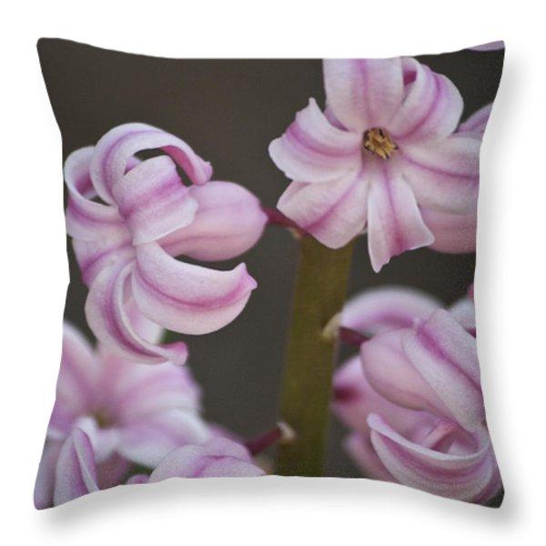 Pink Hyacinth 2 Throw Pillow by Teresa Mucha