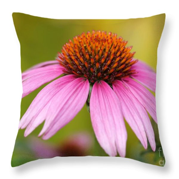 Pink Is In Throw Pillow by Sabrina L Ryan