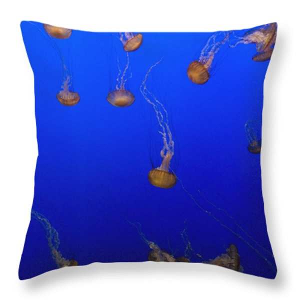 Pink Jellyfish Floating In A Tank At Throw Pillow by Axiom Photographic