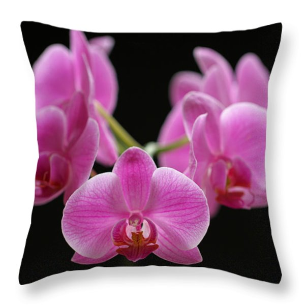 Pink March Madness Throw Pillow by Juergen Roth