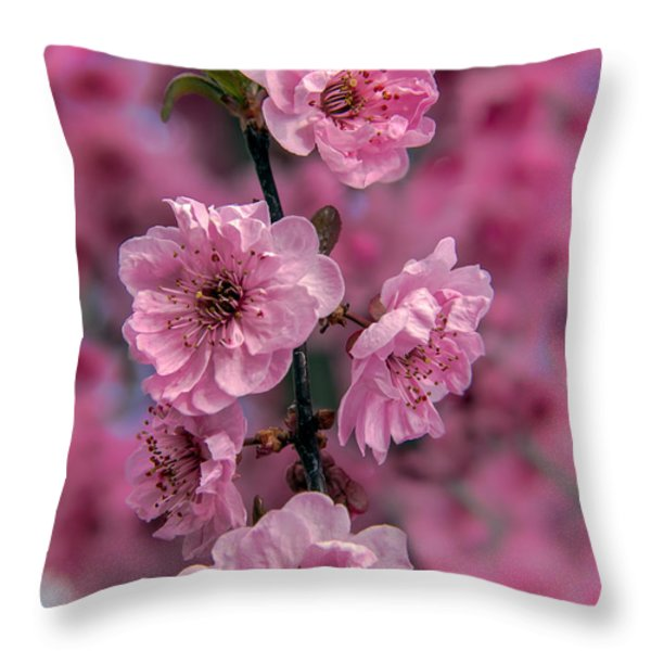 Pink on Pink Throw Pillow by Robert Bales