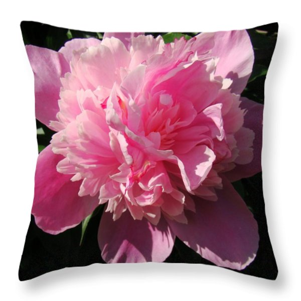 Pink Peony Throw Pillow by Sandy Keeton