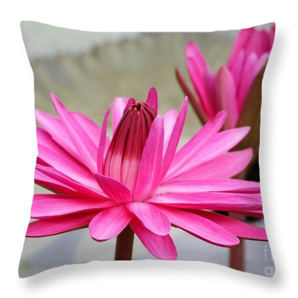 Pink Water Lily Duo Throw Pillow by Sabrina L Ryan