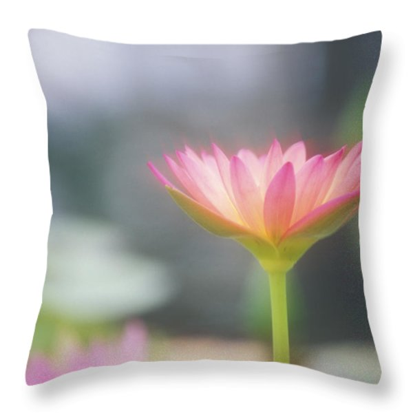 Pink Water Lily Throw Pillow by Ron Dahlquist - Printscapes