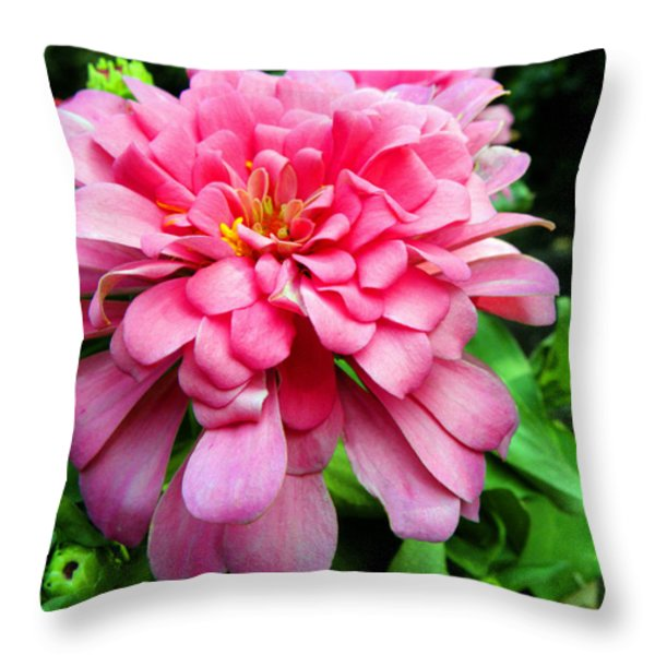 Pink Zinnia Throw Pillow by Sandi OReilly