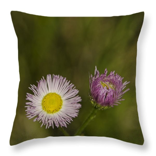 Pinky And Me Throw Pillow by LeeAnn McLaneGoetz McLaneGoetzStudioLLCcom