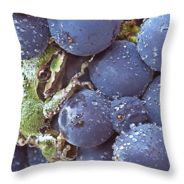 Pinot hitchhiker Throw Pillow by Jean Noren
