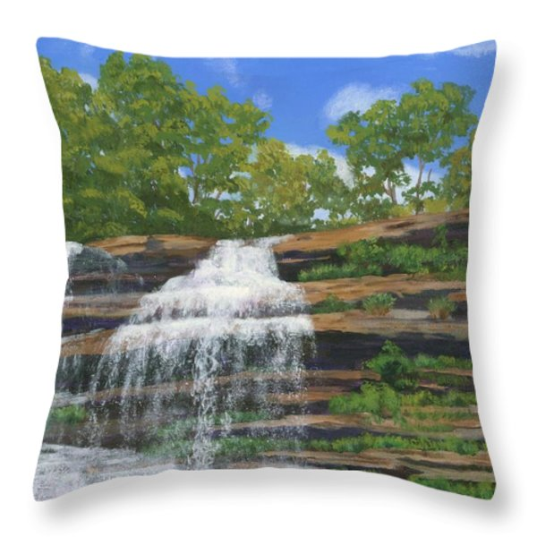 Pixley Falls Throw Pillow by Lynne Reichhart
