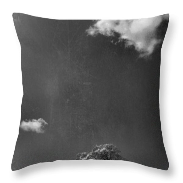 Places We Remember Throw Pillow by Laurie Search