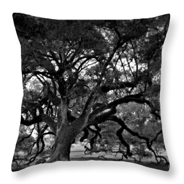 Plantation Oak Tree Throw Pillow by Perry Webster