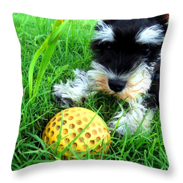 Playing in the Green Grass Throw Pillow by Tisha McGee