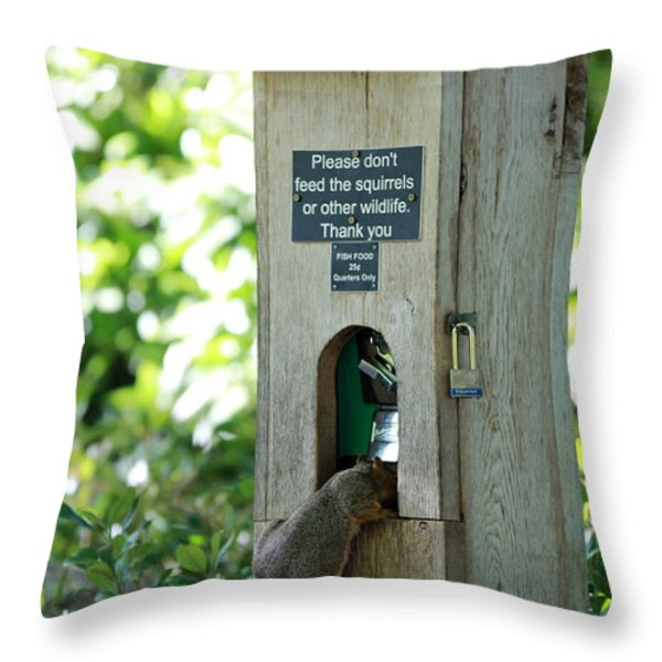 Please Don't Feed The Squirrels Throw Pillow by Elizabeth Hart