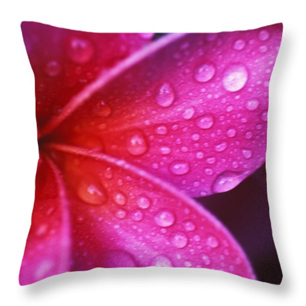 Plumeria Blossom Throw Pillow by Ron Dahlquist - Printscapes