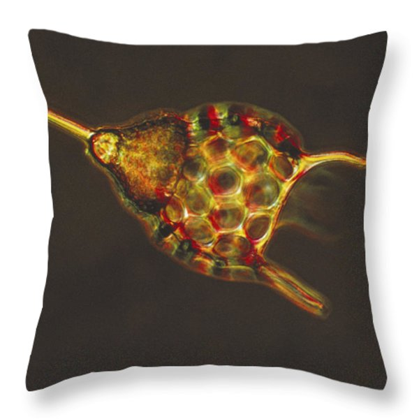 Podocyrtis Triacantha Lm Throw Pillow by Eric V Grave
